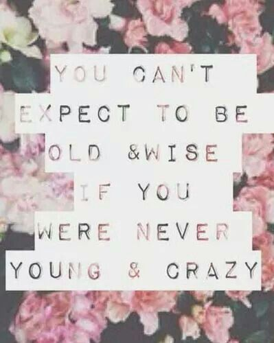 Funny Quotes About Life Young Amp Crazy Old Amp Wise