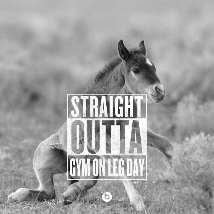 Funny Workout Quotes :straight outta gym on leg day ...
