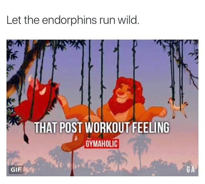 Most Funny Workout Quotes Gym Humor That Post Workout Feeling