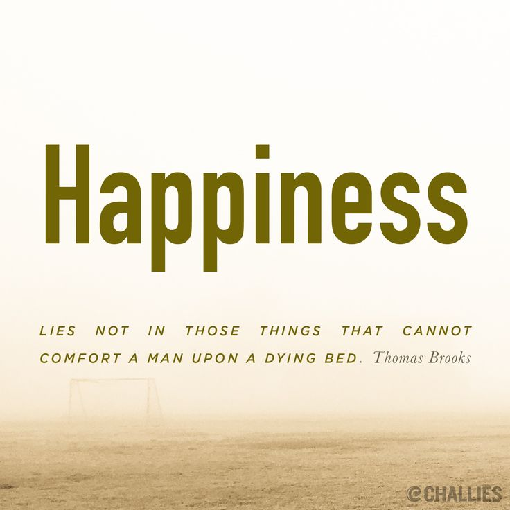 Comfort Quotes Cool Quotes About WisdomHappiness Lies Not In Those Things That Cannot