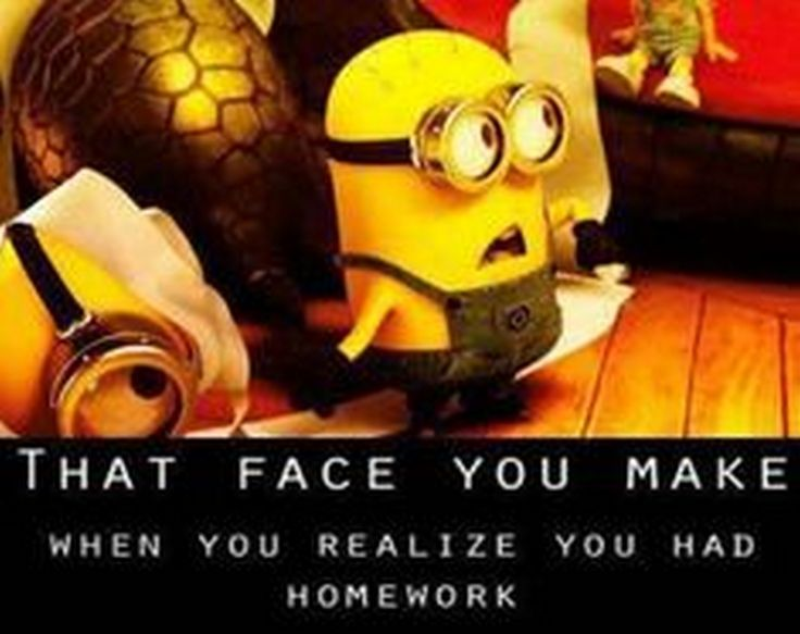 Best Funny Quotes Top 40 Minion Jokes