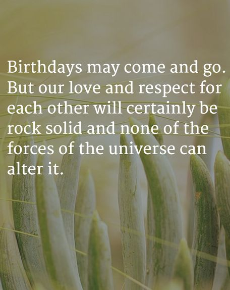 happy birthday wife quotes and wishes wishesgreeting