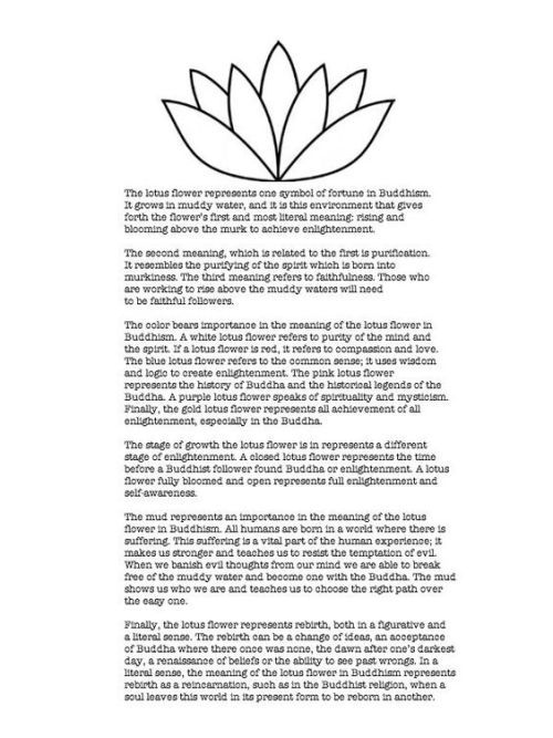 Love Quote Zengardenamaozn Buddha Lotus Flower Professional Zen