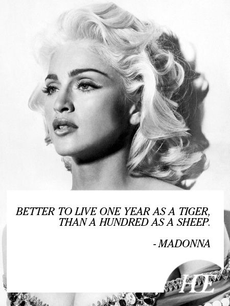 Celebrity Quotes Quote Of The Day Madonna Quotes Daily
