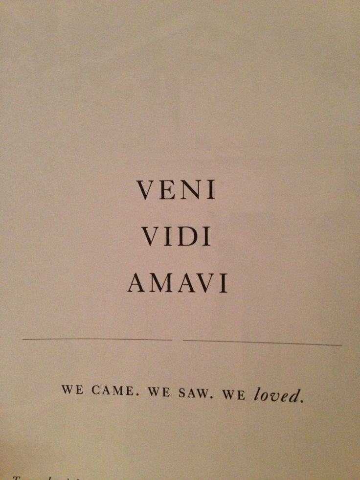 Inspirational Quotes About Strength Veni Vidi Amavi We Came We