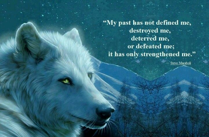 Inspirational Quotes About Strength :Wolf w/ quote embrace