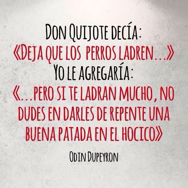 Don Quixote Quotes: Image Result For El Quijote Frases Quotes T Quotes Frases