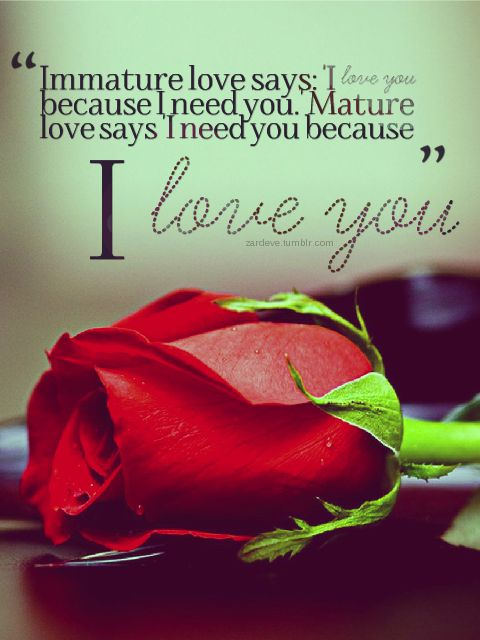 Love Quotes For Him For Her Immature Love Says I Love You