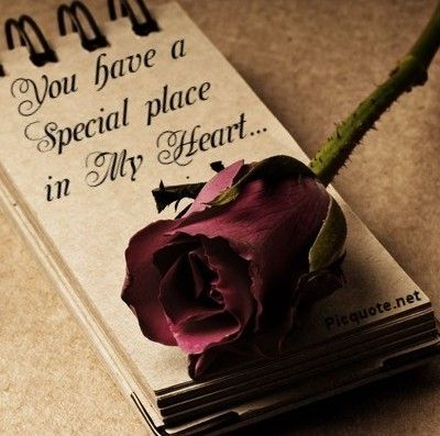 Love Quotes For Him For Her You Have A Special Place In My Heart