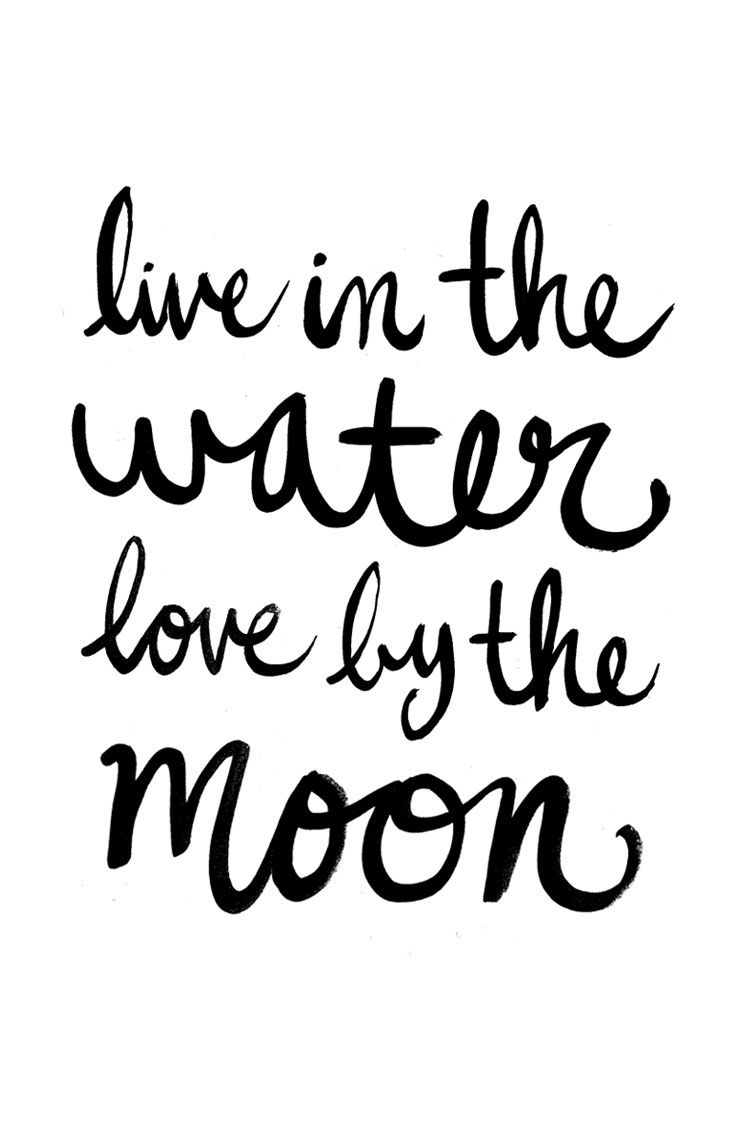 quotes about life live in the water love by the moon quotes Rarest Thing in the World quotes of the day life quote