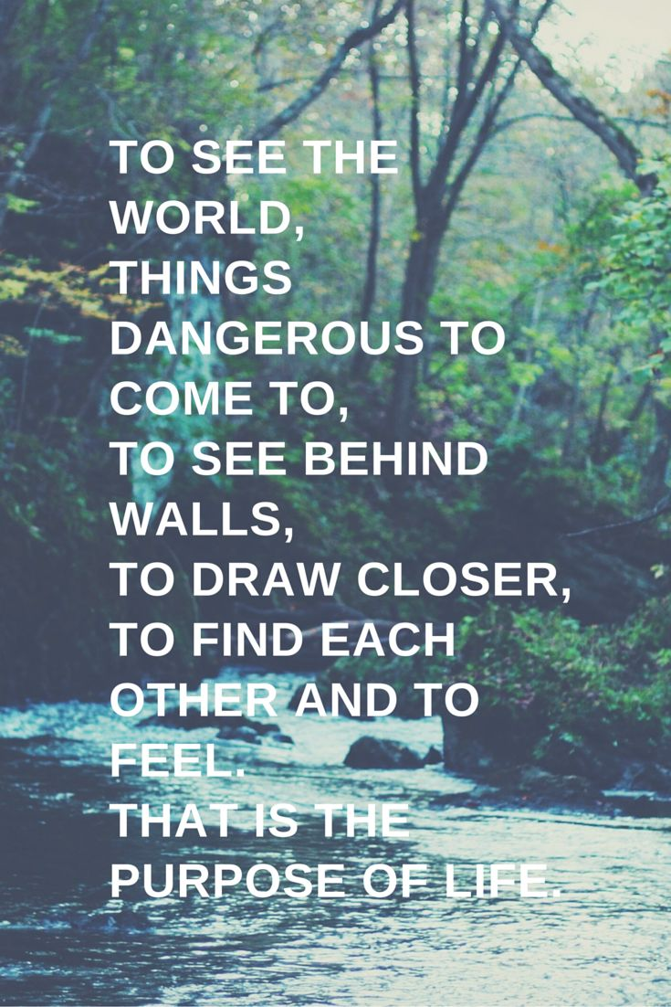 Quotes About Life The Secret Life Of Walter Mitty Quotes Daily