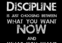 Motivational Fitness Quotes :Motivation To Stay Healthy Takes Discipline  And Selfu2026
