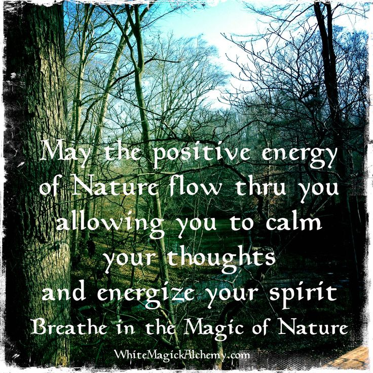 Image of: Beautiful Quotes Of The Day Life Quote Quotes Daily Quotes About Life breathe In The Magic Of Nature Quotes Daily