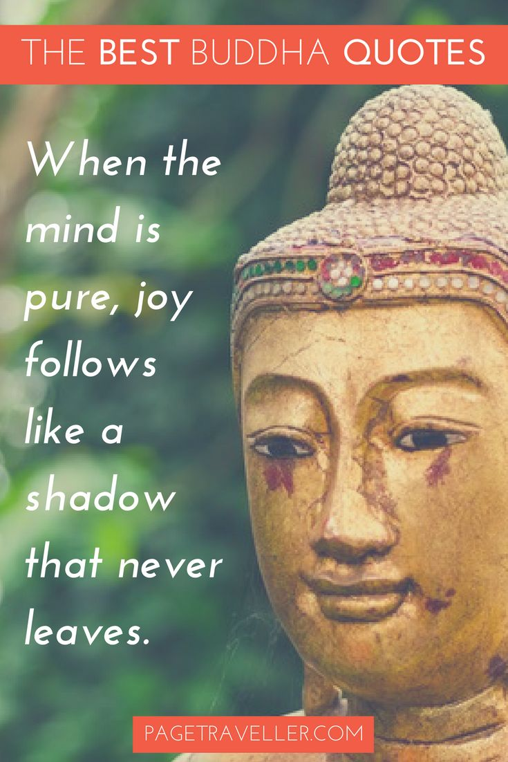 Statue Quotes | Quotes About Life Buddha Quote Happiness Gold Statue Quotes