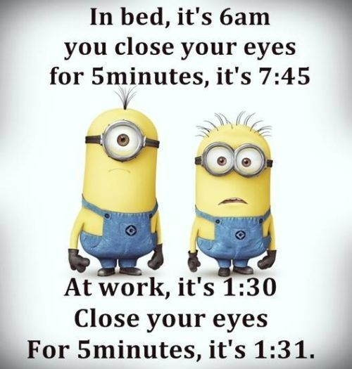Best Funny Quotes About Life Memes - malloryheartcozies