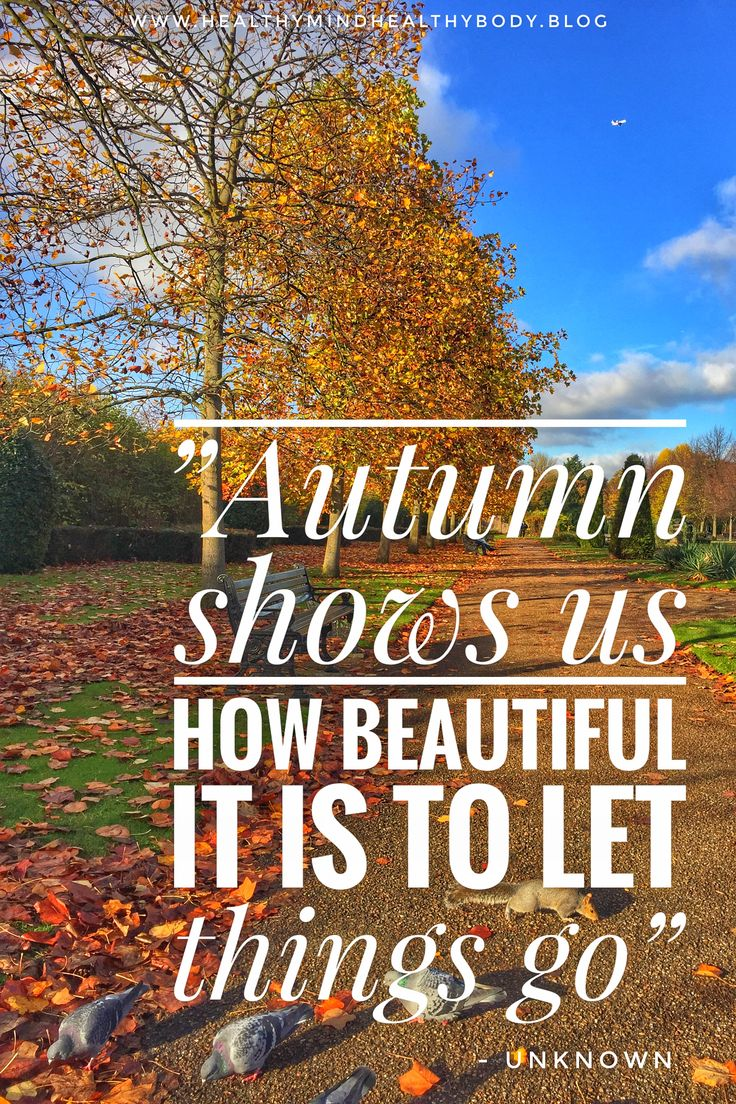 Autumn Is The Time Of Year That Reminds Us That Letting Go Of