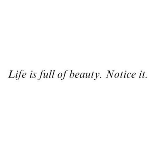Photography Quotes Life Is Full Of Beauty Notice It Quote
