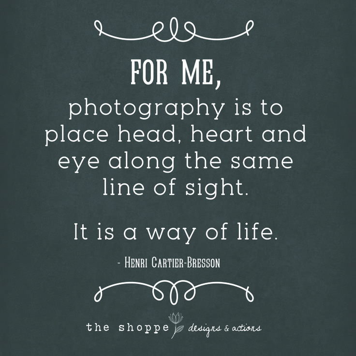 Photography Quotes True Statements For Photographers