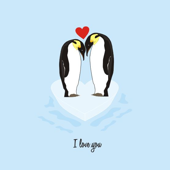 Penguin Love Quotes Amazing Penguin Love Quotes Daily Leading Quotes Magazine Database We