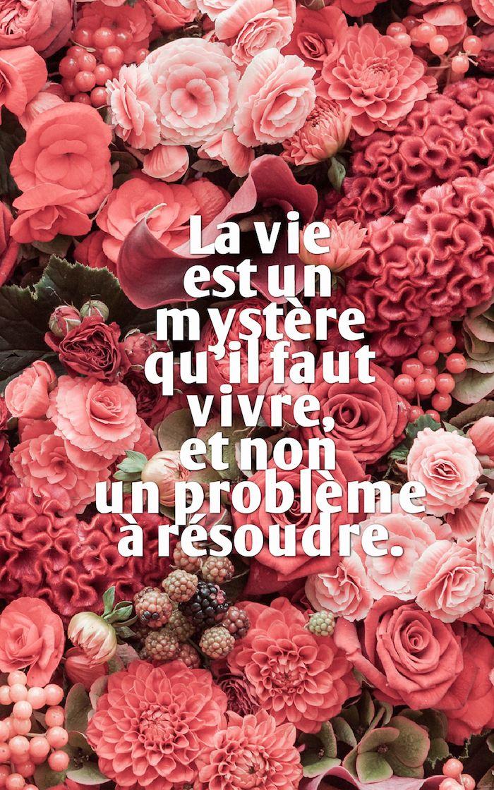 Photography Quotes Belle Phrase Bouquet De Fleurs Rose Et Rouge