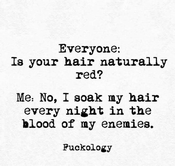 Most Funny Quotes 34 Snappy Snarky And Silly Quotes Funnyquotes