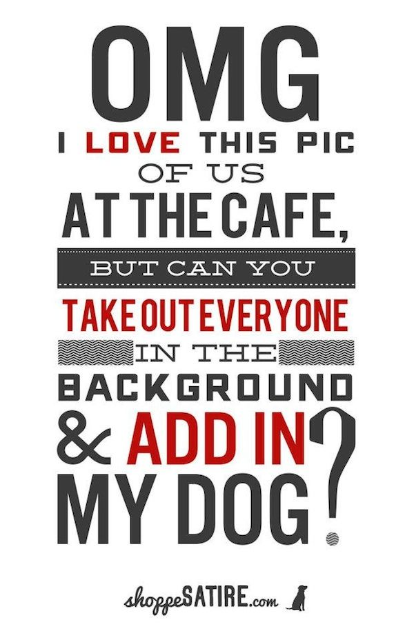 Photography Quotes Series Shoppe Satire By The Shoppe Design
