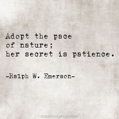 Image of: Happiness Quotation Image Quotes Daily Quotes About Life adopt The Pace Of Nature Her Secret Is Patience