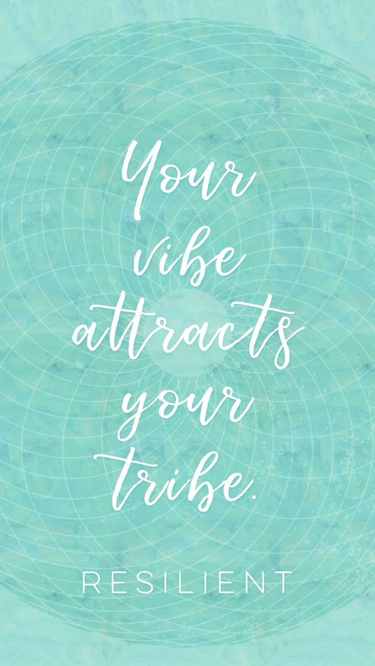 Quotes About Life :Your vibe attracts your tribe. Positive ...