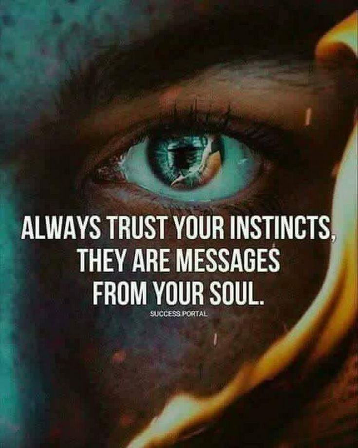 Quotes About Life Always Trust Your Instincts They Are Messages