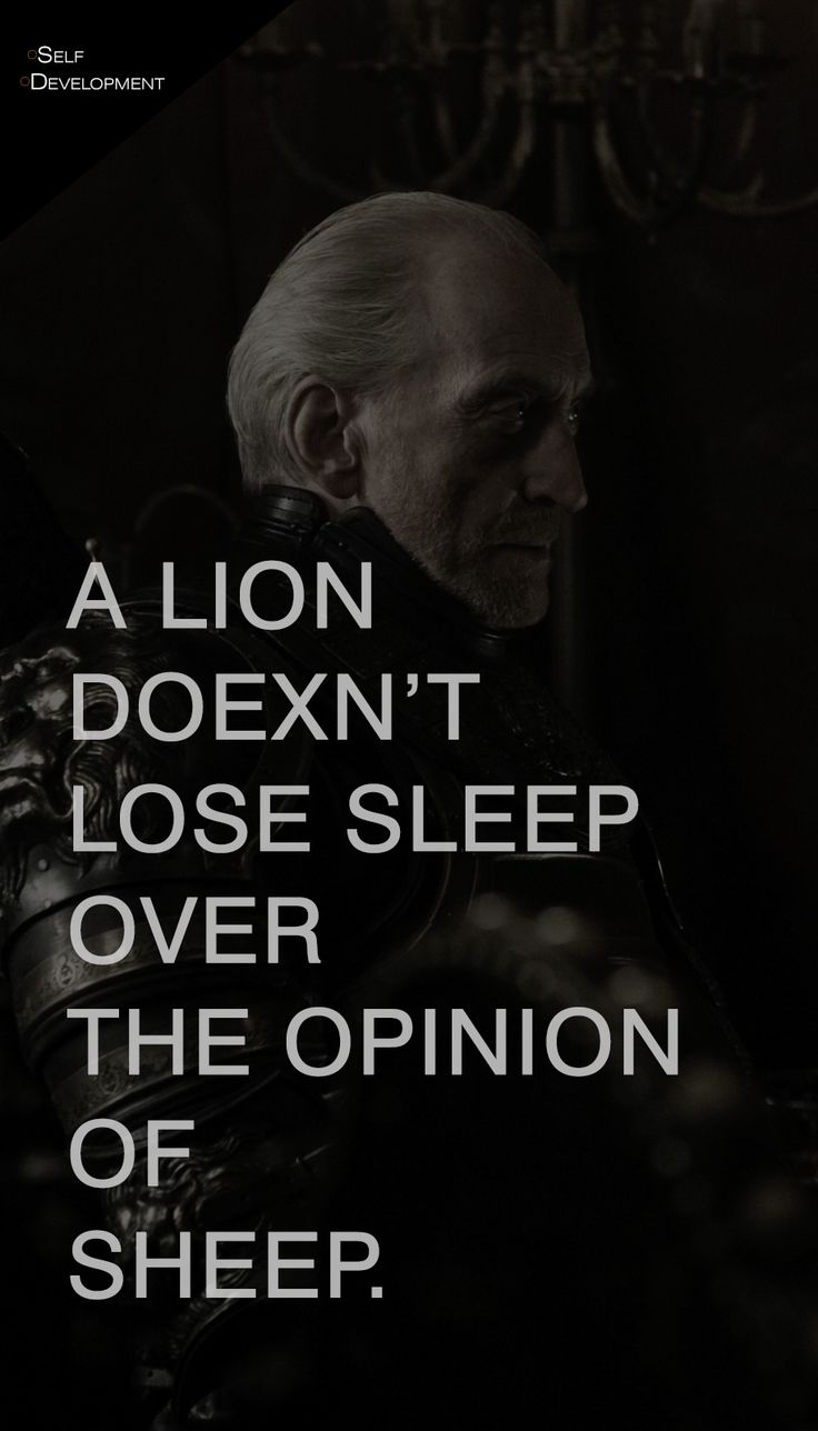 Quotes About Life A Lion Doexnt Lose Sleep Over The Opinion Of