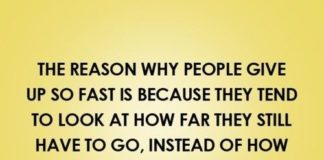 funny workout quotes Archives - Page 3 of 806 - Quotes Daily ...